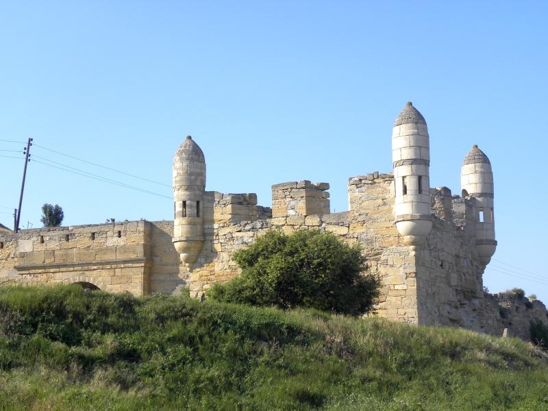 Крепость Ени-кале на берегу Керченского пролива. заросли самосевных растений