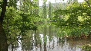 Гостевой комплекс Кизиловое_121046
