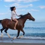управление конем через гриву и носки ног