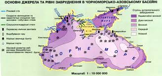 В Черном море два циркуляционных течения, которые поднимают чистую воду с большой глубины. Она холодная, но зато без загрязнения