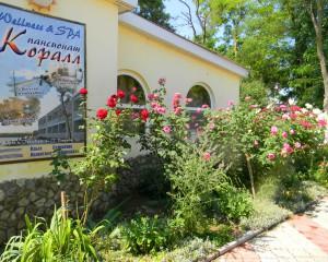 Героевка. База отдыха Коралл, набережная, рекламный щит комплекса Welness & SPA, центр здоровья с соляной пещерой и тренажерным залом