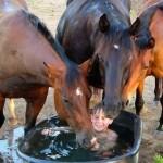 """""""Вдруг из маминой конюшни Три лошадки к малышу. Ты лижи его до дыр. Патамушта патамушта Тут не место грязнышу. )) Так учил нас Мойдодыр"""""""